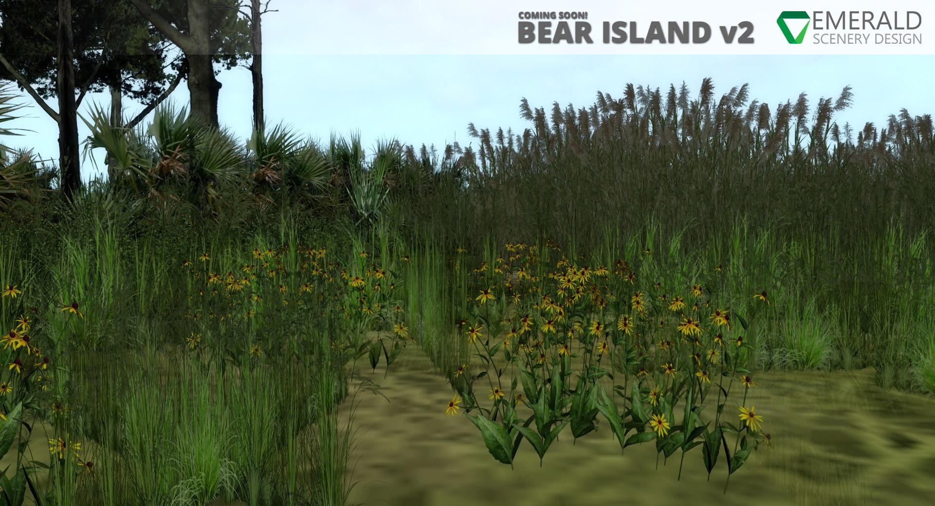 ESD_BearIslandv2_8.jpg
